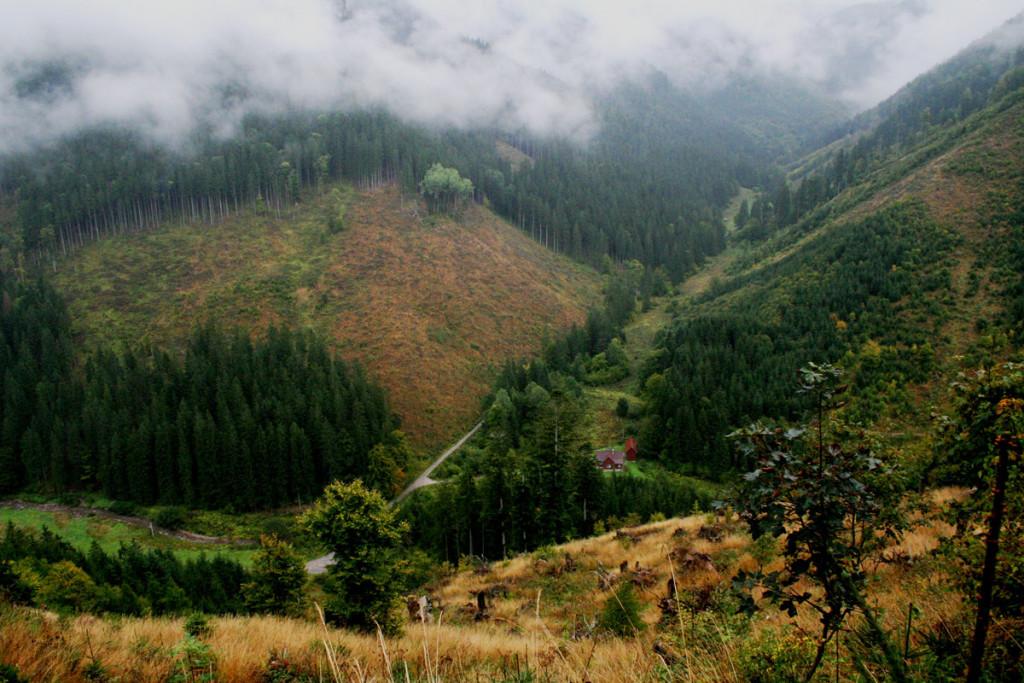 02-po-l3-septembri-sa-rozozvucala-hlasami-jelenov-aj-blatna-dolina-vo-velkej-fatre