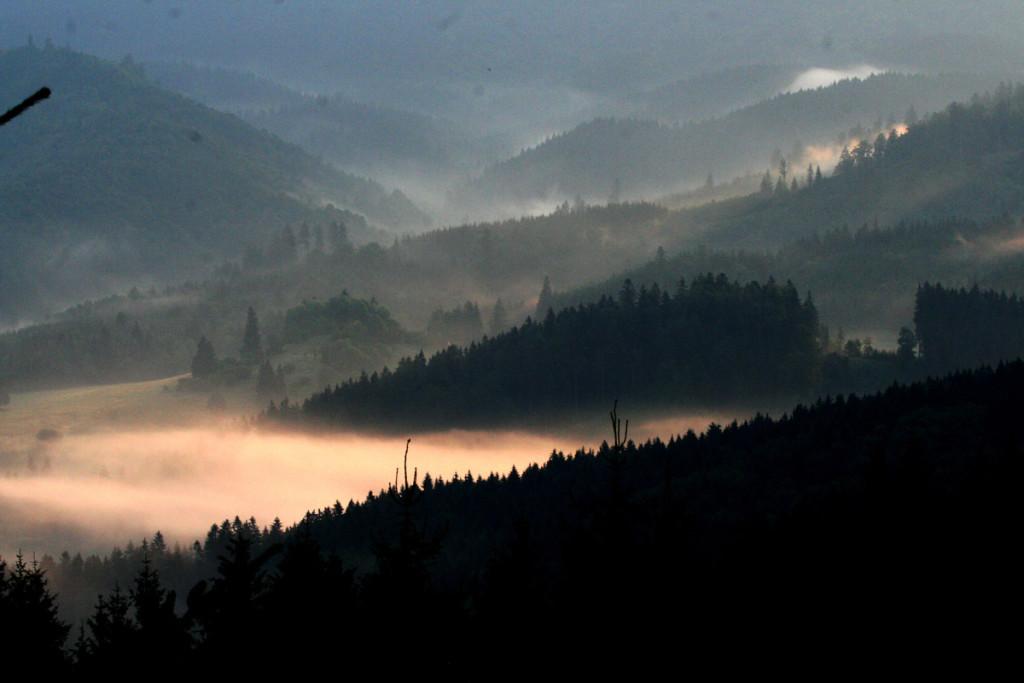 04-ranna-atmosfera-jelenej-ruje-na-kyslinkach